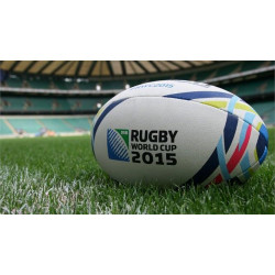 Rugby 15 World Cup (PC)